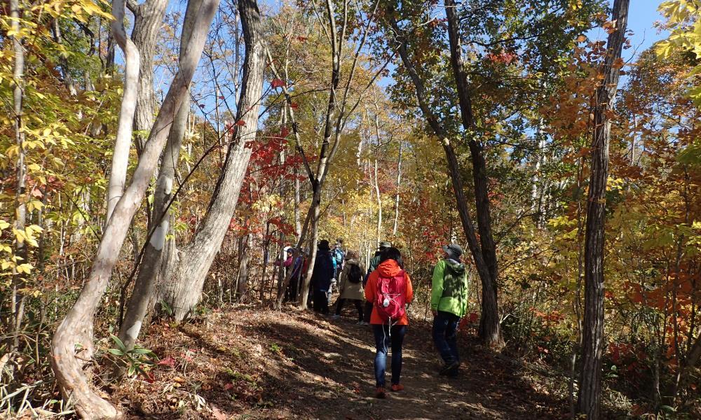 紅葉めぐりハイキング